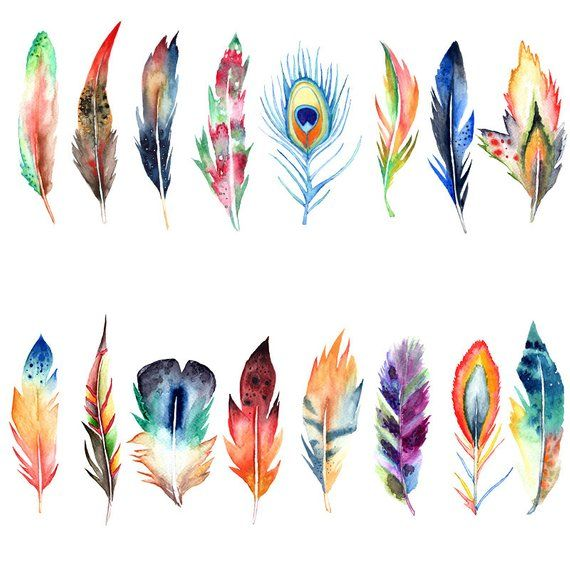 Watercolor boho feather clipart, aquarel feather clipart.