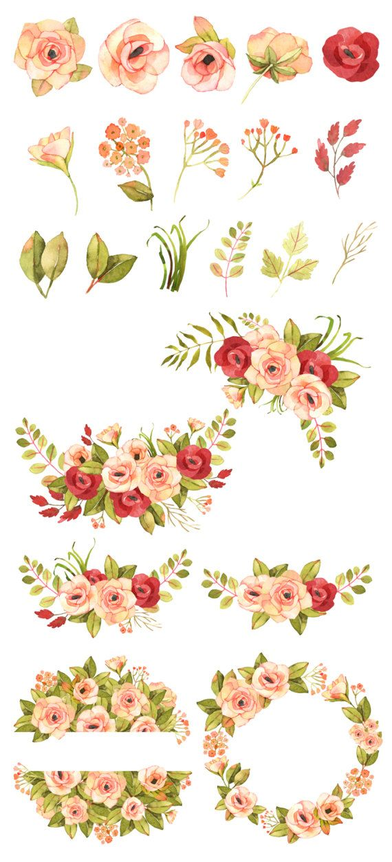 Flower clipart Floral clipart Roses watercolor clipart Roses.