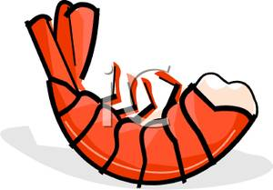 Cooked Shrimp Clipart.