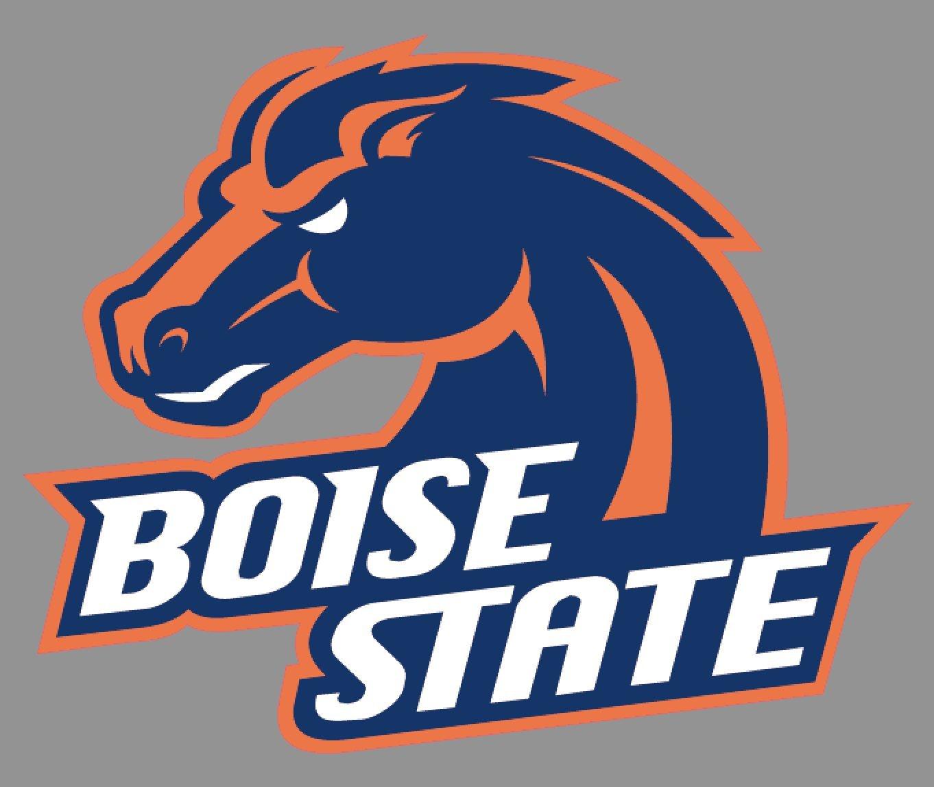 Amazon.com: Boise State Broncos Banner.