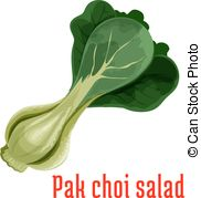 Bok choy Illustrations and Clipart. 108 Bok choy royalty free.