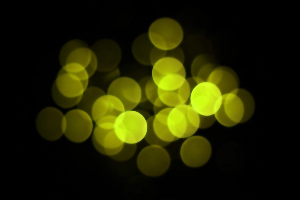 Latest ] Bokeh Effect images.