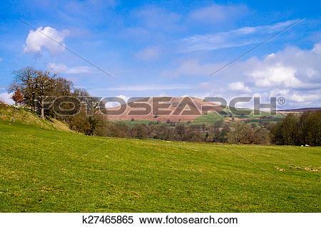 Stock Image of Fields in Bolton Abbey k27465865.