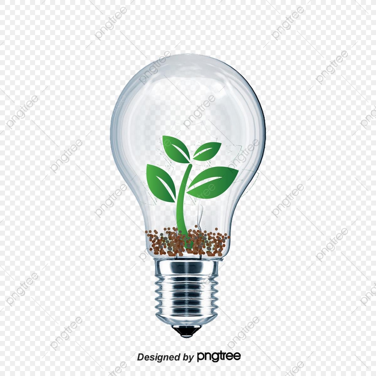 Bombillas De Ahorro De Energía, Bombilla De Luz, El Ahorro De.