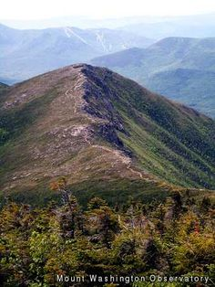 Mount Flume via Osseo Trail: Goal hikes in NH.