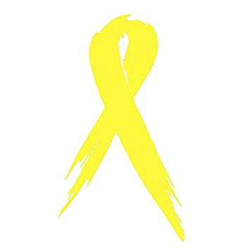 ZForce [ST#81] One Sarcoma/Bone Cancer Awareness Ribbon Car Vinyl Decal  Sticker 3\