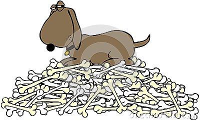 Pile Of Bones Stock Photo.