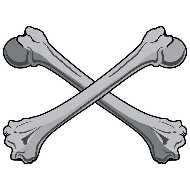 Bones Clip Art Free Vector.