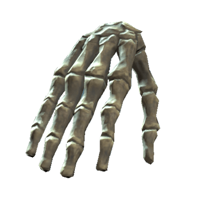 Bones Of the Body transparent PNG images.