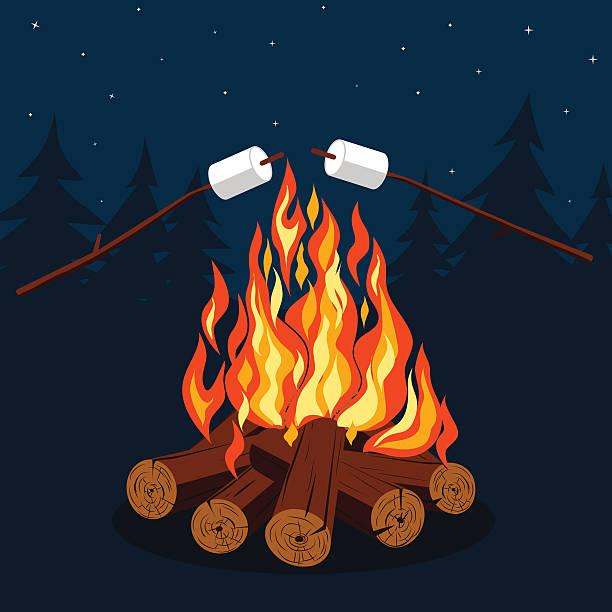 Best Campfire Illustrations, Royalty.