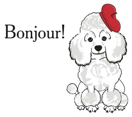 881 Bonjour Stock Vector Illustration And Royalty Free Bonjour Clipart.