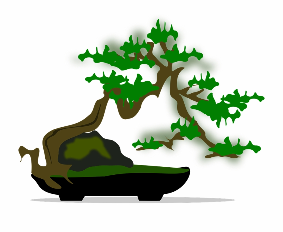 Bonsai Clipart Long Tree.