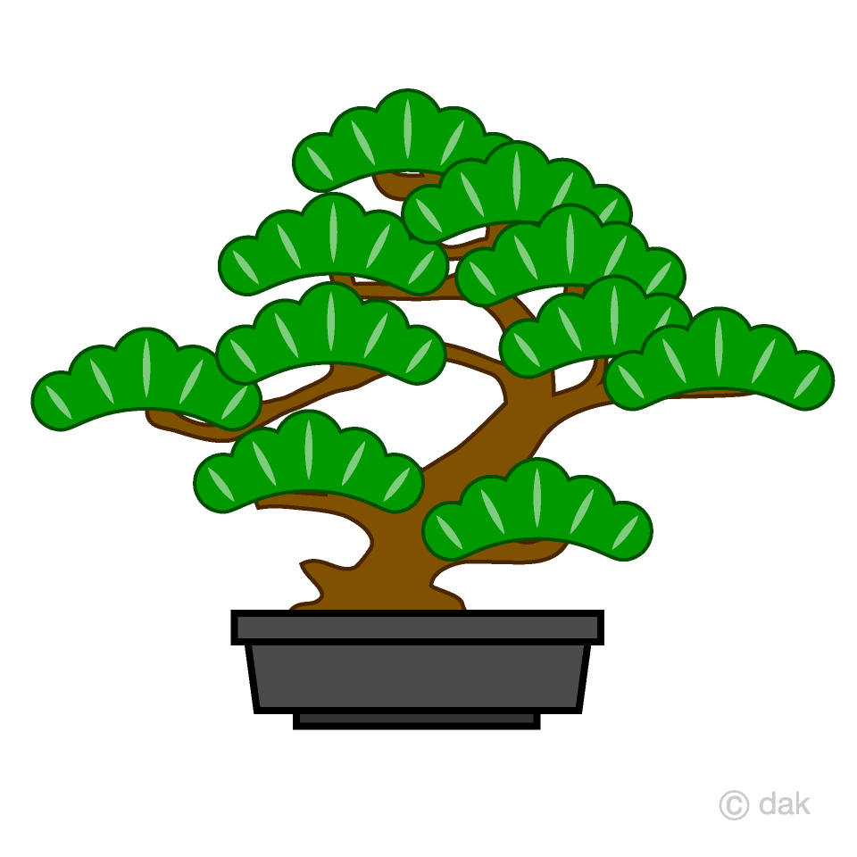 Pine Bonsai Clipart Free Picture|Illustoon.