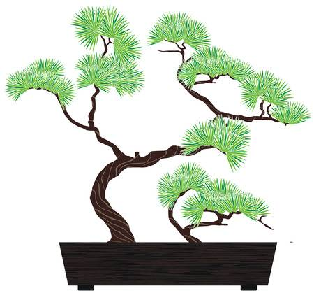 3,602 Bonsai Tree Cliparts, Stock Vector And Royalty Free Bonsai.