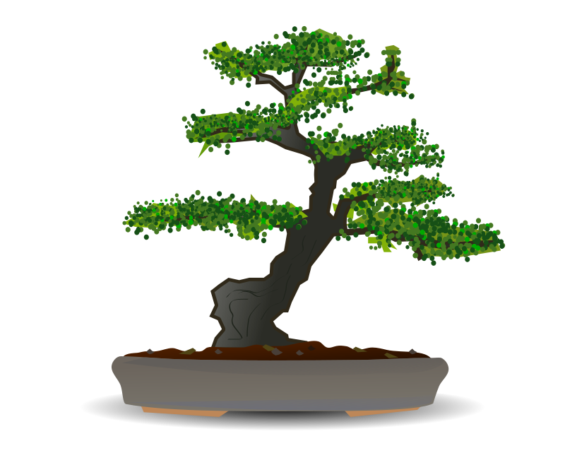 Free Clipart: Bonsai.