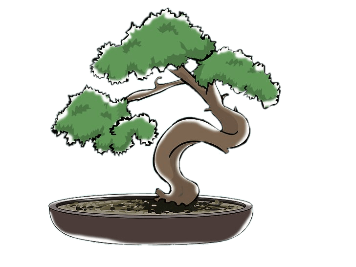 Bonsai Clipart transparent PNG.
