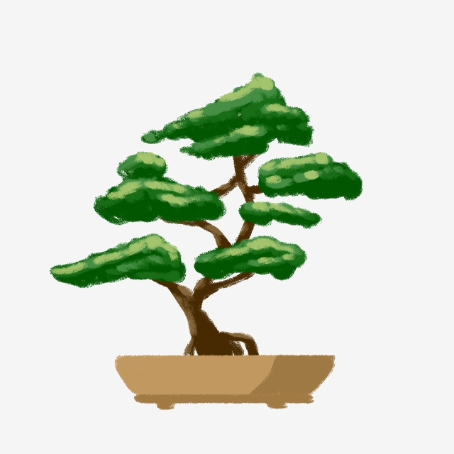 Bonsai Tree Png, Vector, PSD, and Clipart With Transparent.