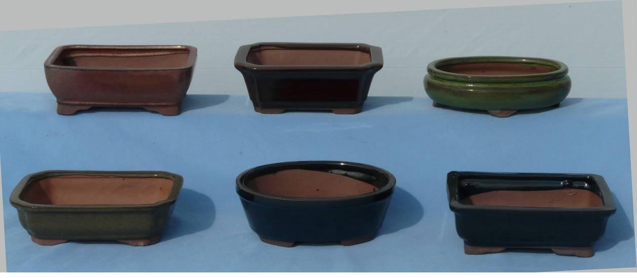 wholesale bonsai pots wholesale bonsai trees, H&F Import Bonsai.