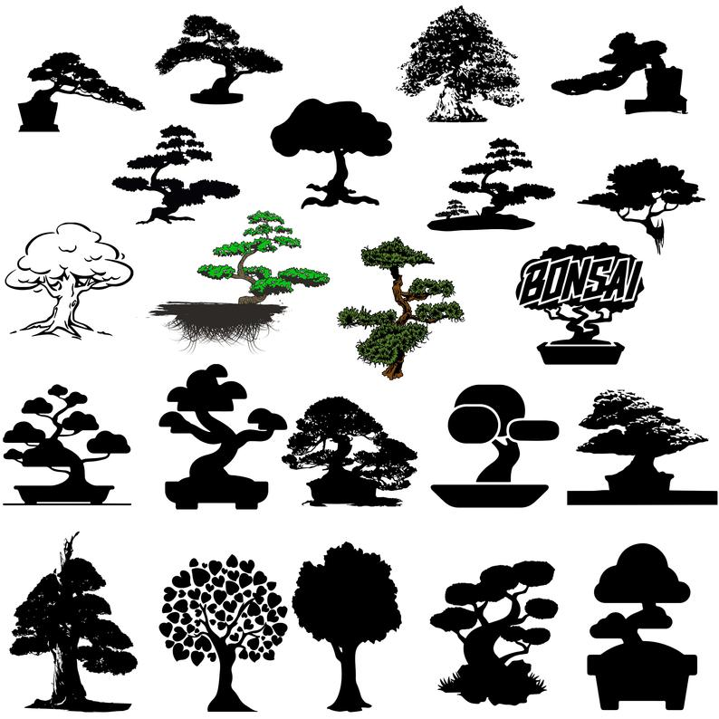Bonsai trees svg/Trees svg,png,dxf/Bonsai trees clipart for  Print/Design/Cricut/Silhouetteetc.