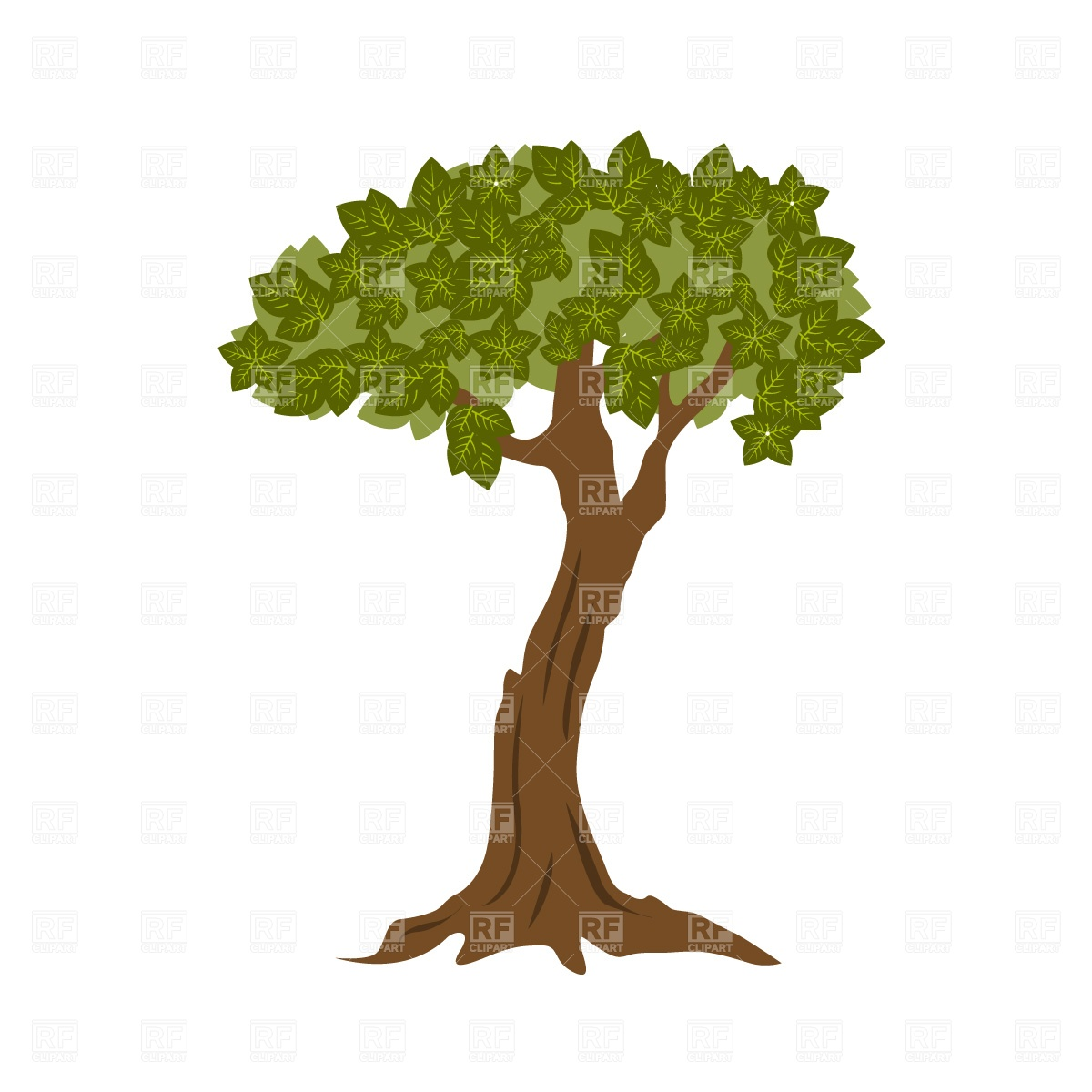 Foliage bonsai tree Stock Vector Image.