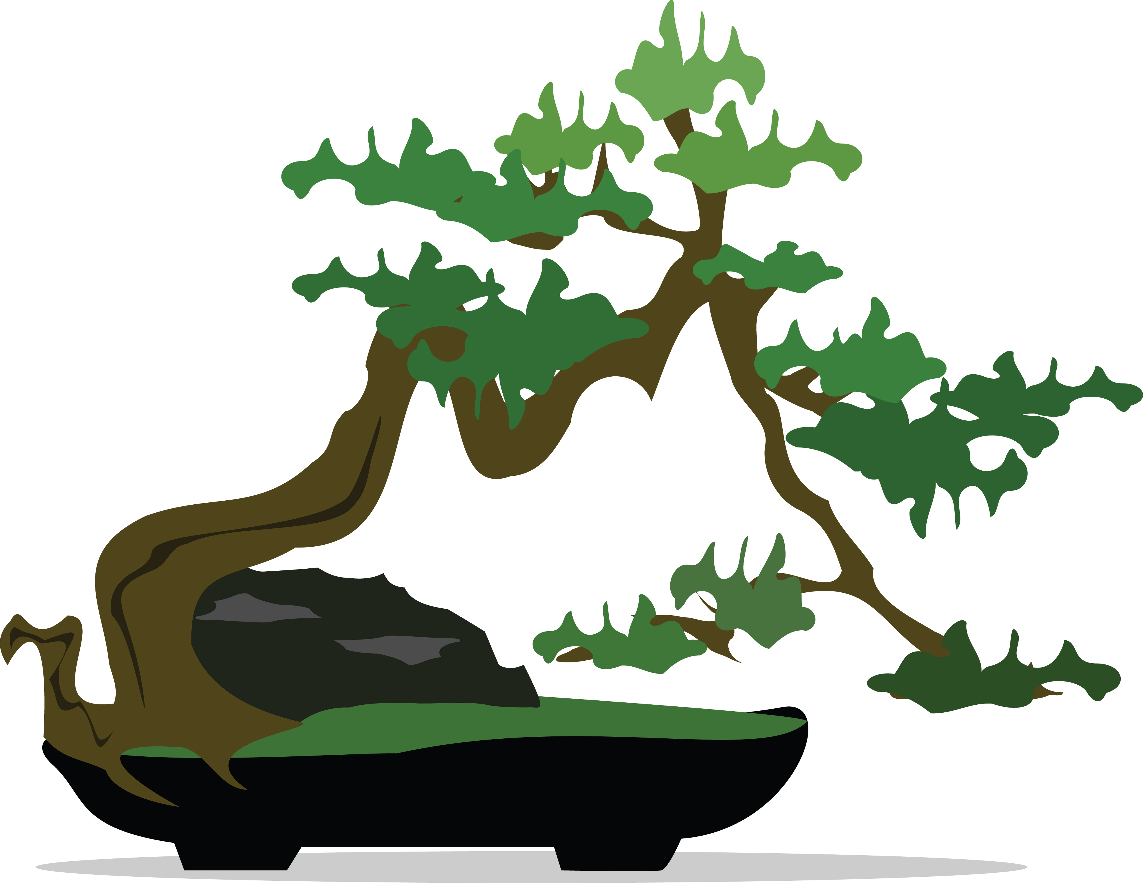 Free Clipart of a Bonsai Tree.