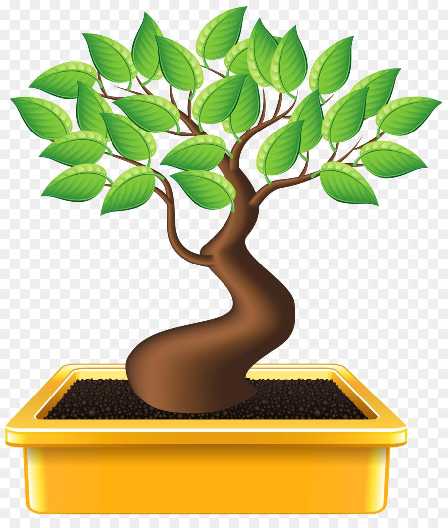 Bonsai Treetransparent png image & clipart free download.