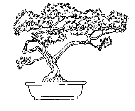 Bonsai Tree Clip Art Download.