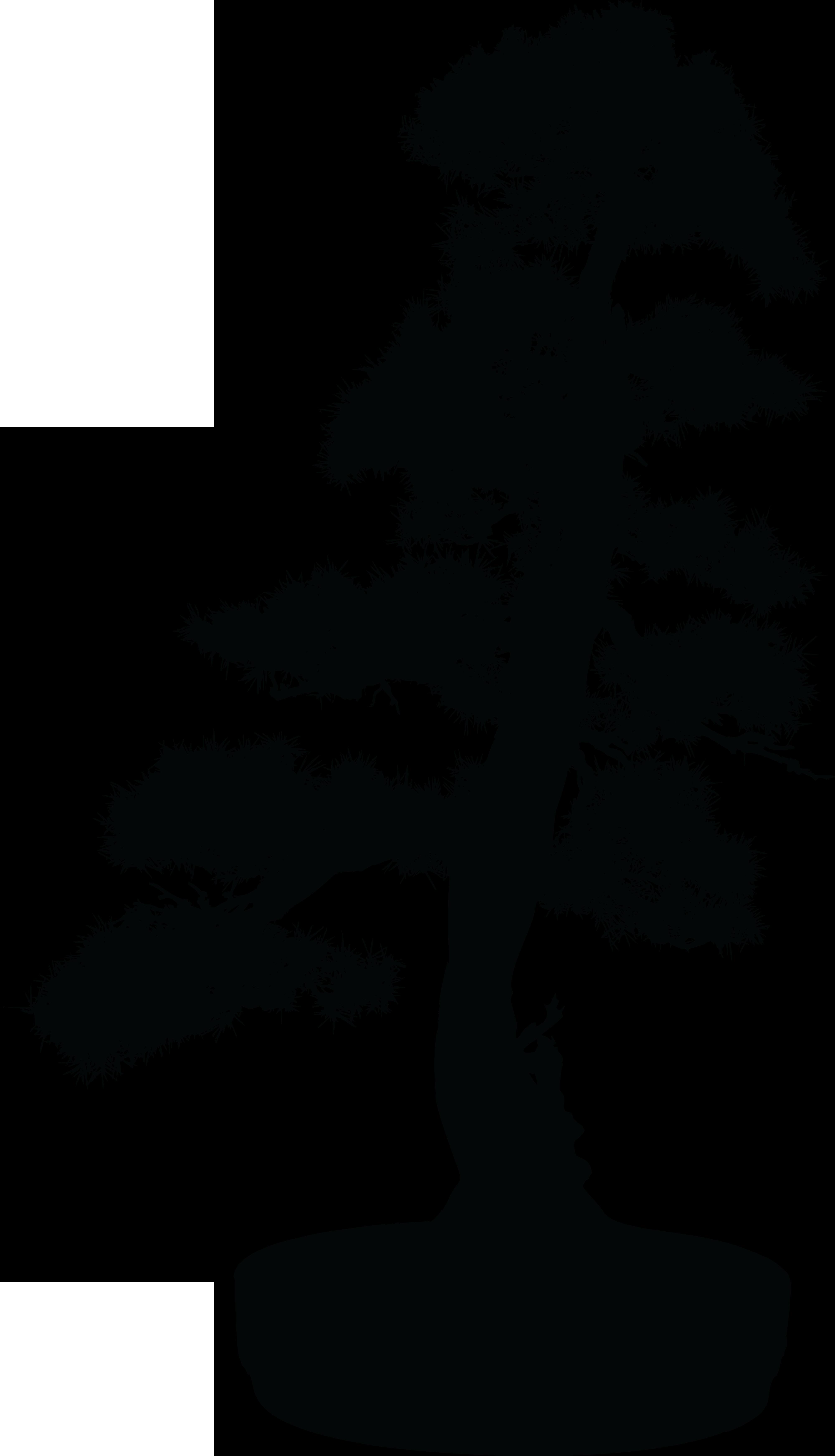 Bonsai Tree Silhouette Clip art.
