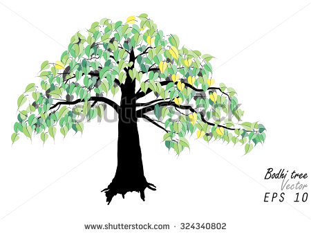 Bodhi Tree Stock Images, Royalty.