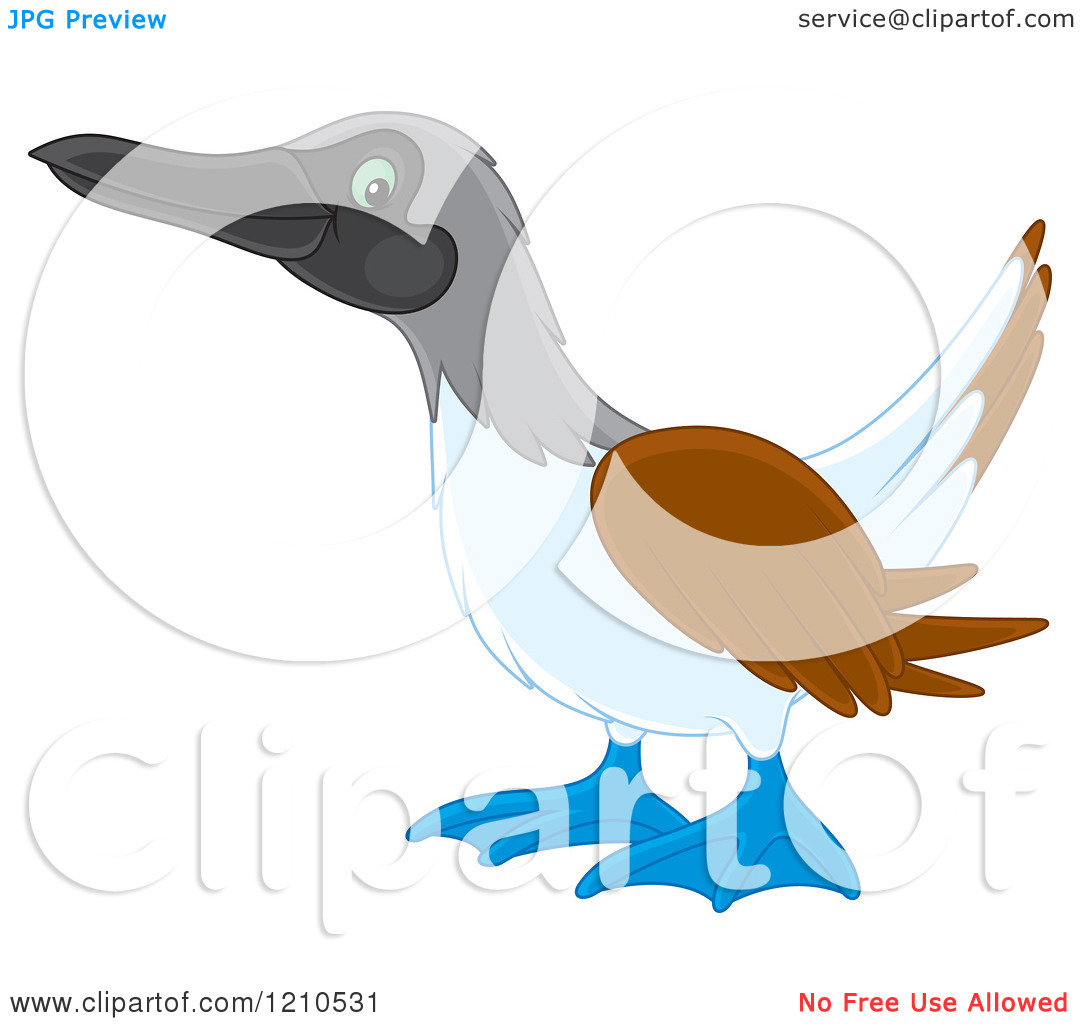Cartoon of a Blue Footed Boobie Bird.