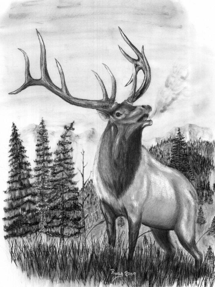 Elk Head Clip Art.
