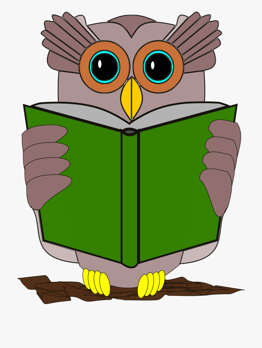 Reading Owl Clipart.