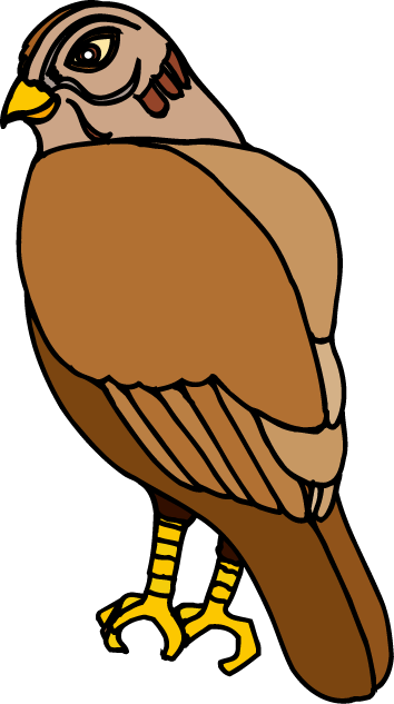 Hawk Clipart & Hawk Clip Art Images.