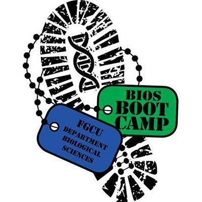 Bios Boot Camp.