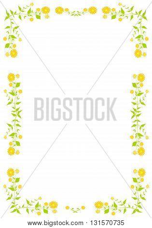 boraginaceae.