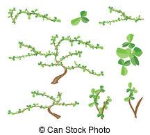 Boraginaceae Clip Art Vector Graphics. 38 Boraginaceae EPS clipart.
