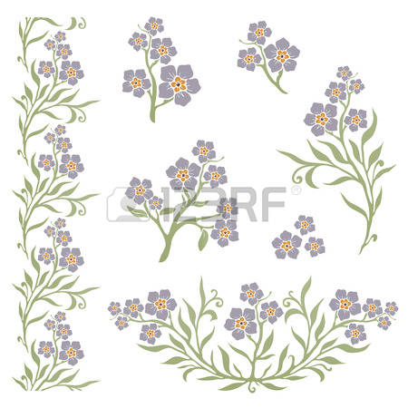 51 Boraginaceae Cliparts, Stock Vector And Royalty Free.