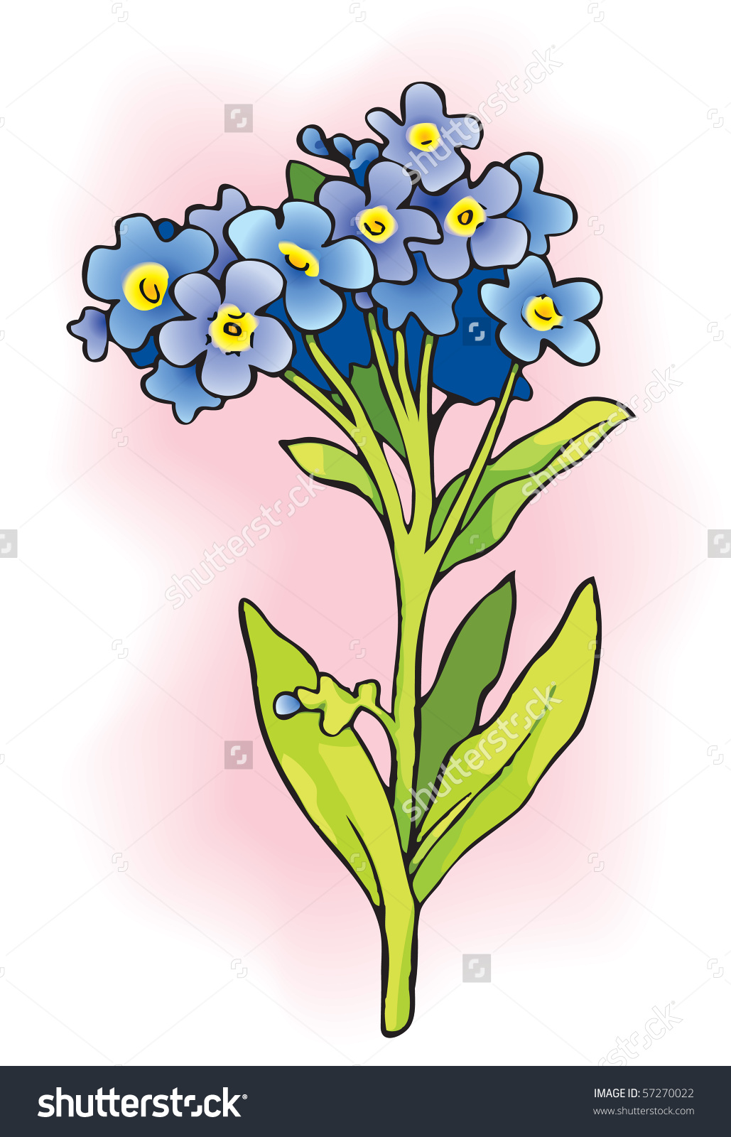 Vector Drawing Sprig Myosotis Flowering Plants Stock Vector.