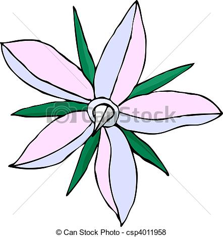 Vector of Borago Officinalis in Bloom.
