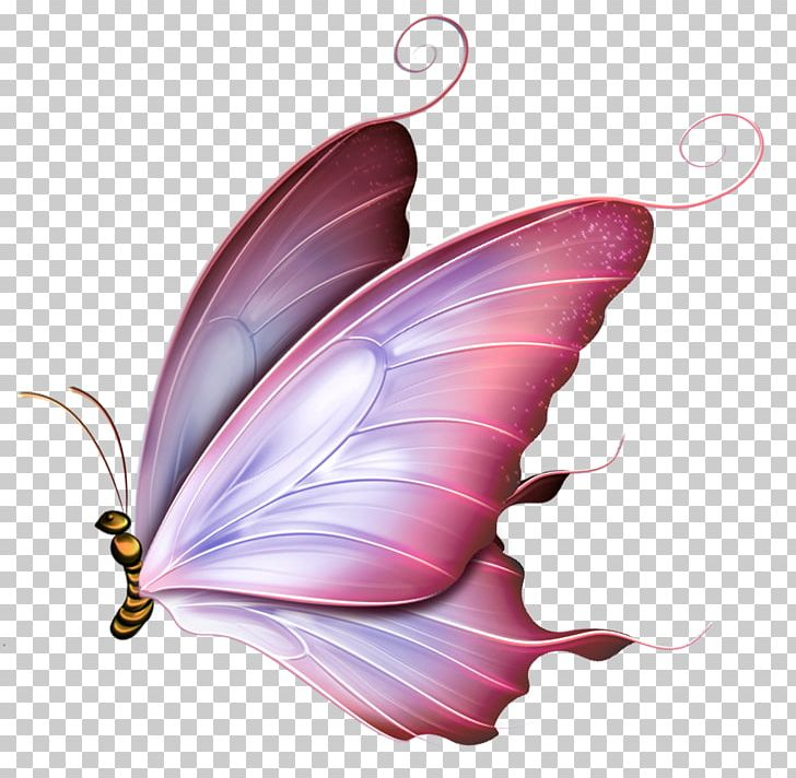 Butterfly Drawing Borboleta PNG, Clipart, Abziehtattoo.