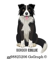 Border Collie Clip Art.