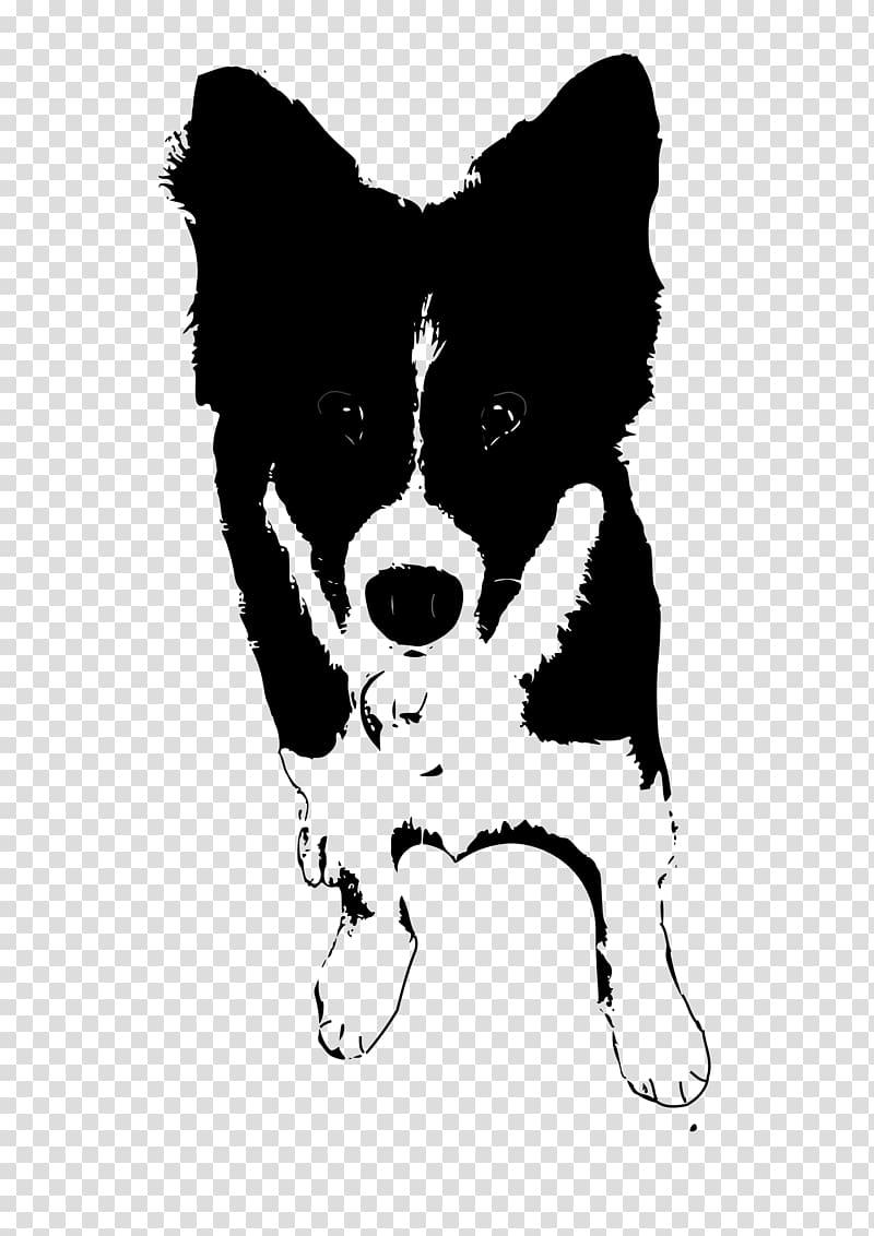 Border Collie Rough Collie Puppy , doberman transparent background.
