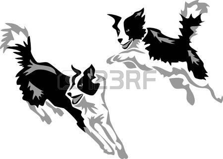 228 Border Collie Cliparts, Stock Vector And Royalty Free Border.