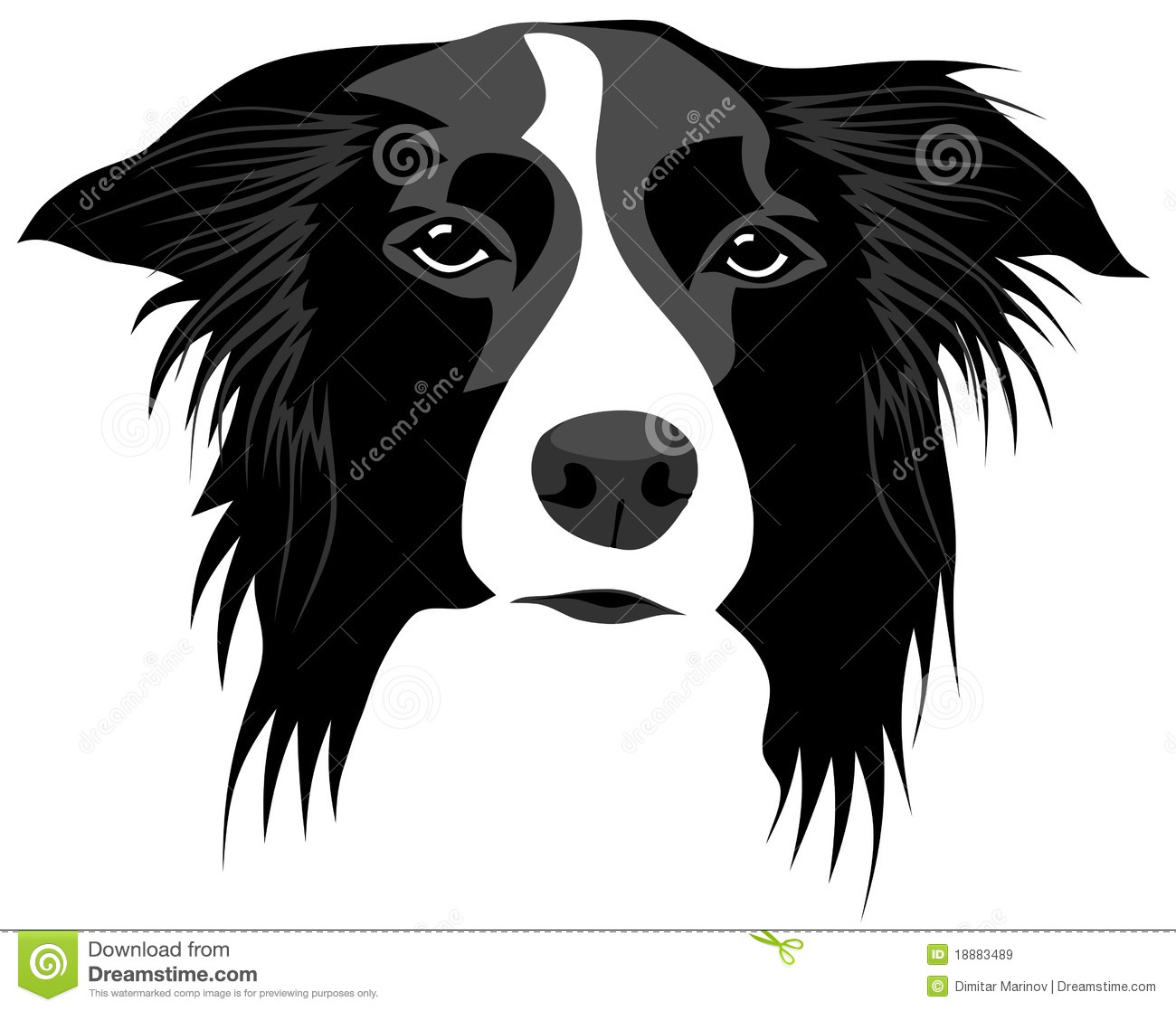 Border Collie Clipart Free.
