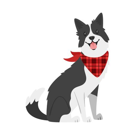 434 Border Collie Cliparts, Stock Vector And Royalty Free Border.