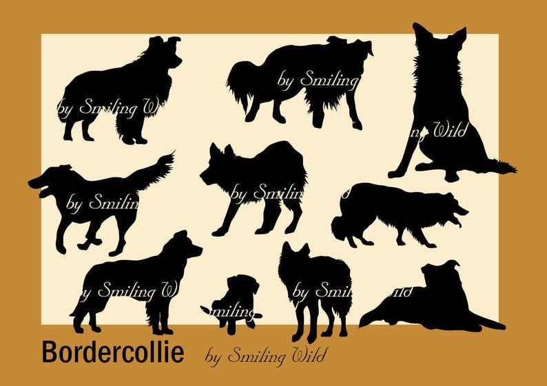 Border Collie svg border colly silhouette cliart Puppy clip art printable  dog border collie print instant download commercial use dog print.