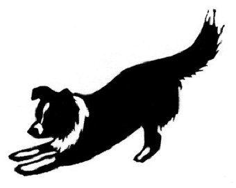border collie silhouette tattoos.