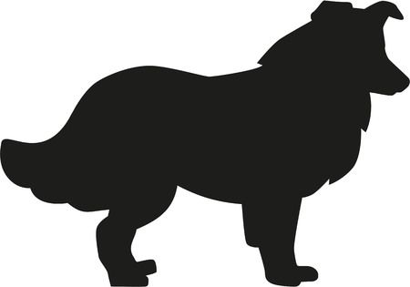 1,693 Collie Stock Vector Illustration And Royalty Free Collie Clipart.