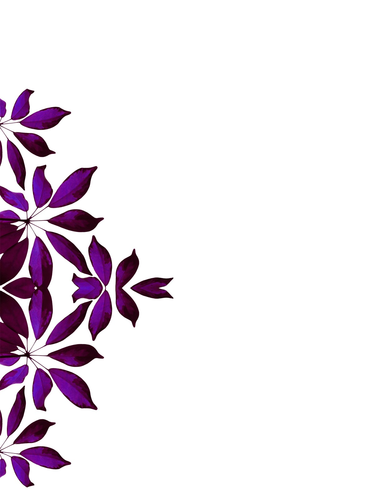 Free Images Of Borders Designs, Download Free Clip Art, Free Clip.