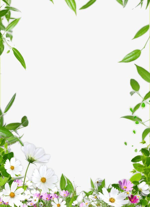 Flower Border, Floral Border Design, Flower Border Framework, Frame.